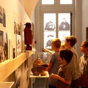 Krokuskriebels 2021 Damiaanmuseum